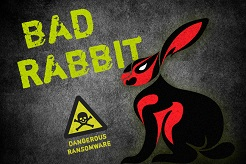 bad-rabbit
